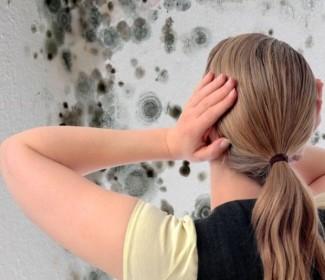Обработка пола от грибка и плесени